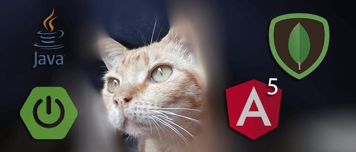 Spring Boot, MongoDB and Angular 5 CRUD Java Web Application