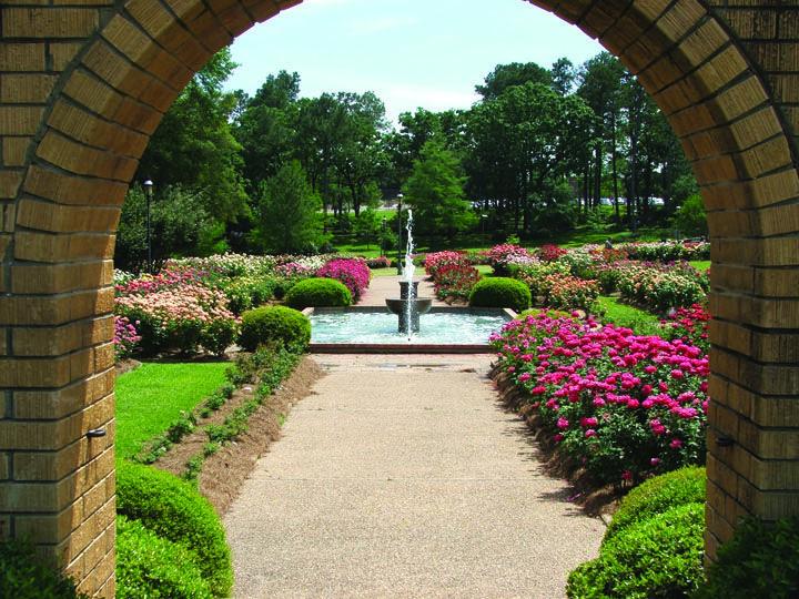 Tyler Municipal Rose Garden The World S Largest Rose Garden With 38 000 Rose Bushes Rose Bush Parks N Rec Garden