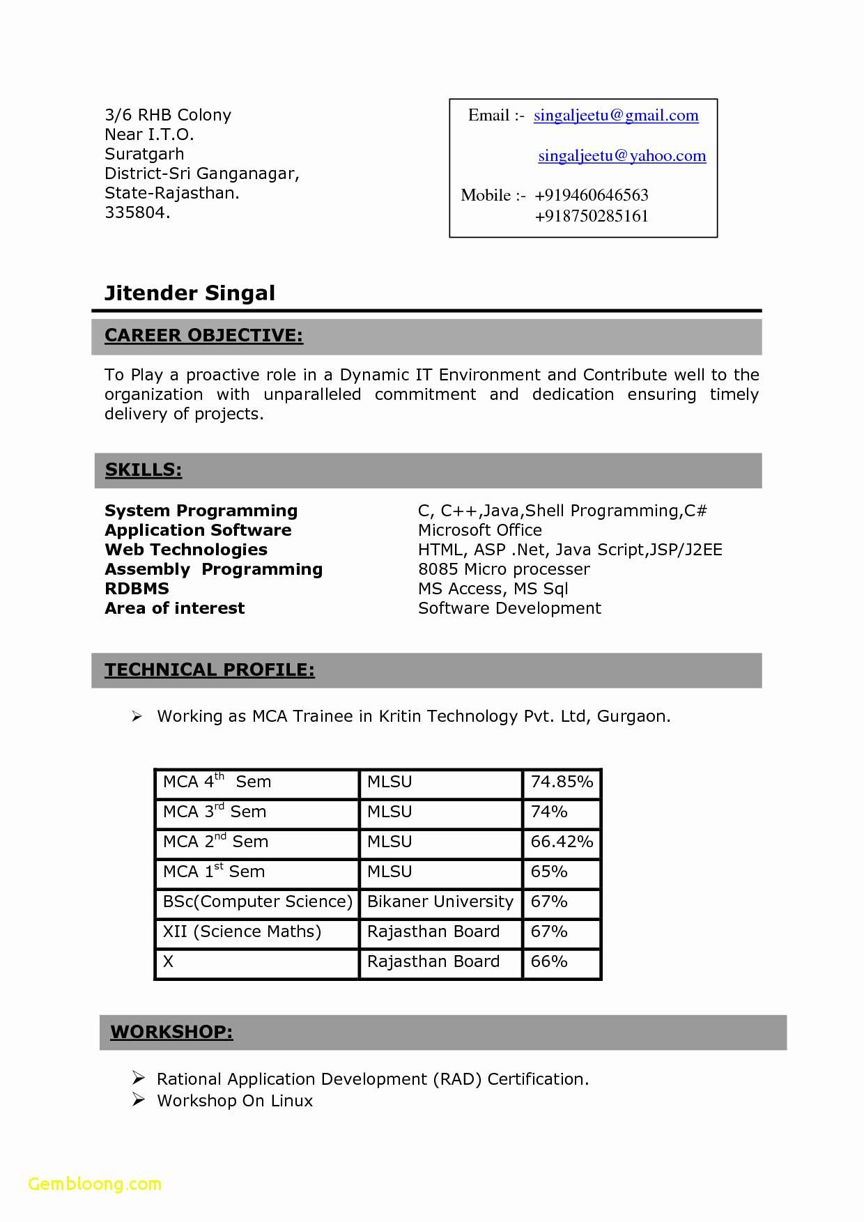 Resume format for 3rd year engineering students resume
