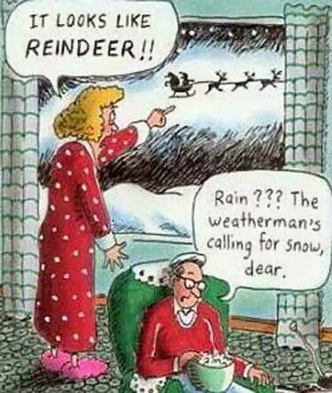 Wife Husband It Looks Like Reindeer Funny Christmas Cartoon Funny Christmas Cartoons Christmas Humor Funny Christmas Pictures