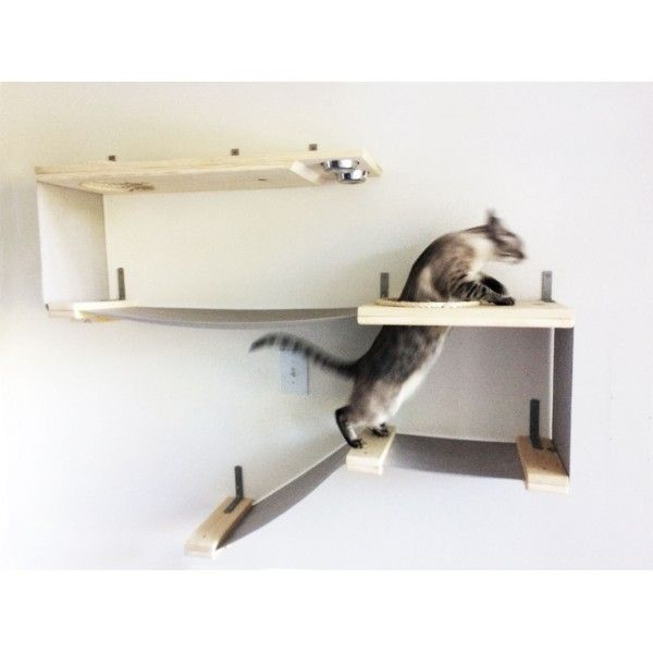 wall mounted cat furniture. Wall Mounted Cat Furniture. Deluxe Feeder Station Furniture H