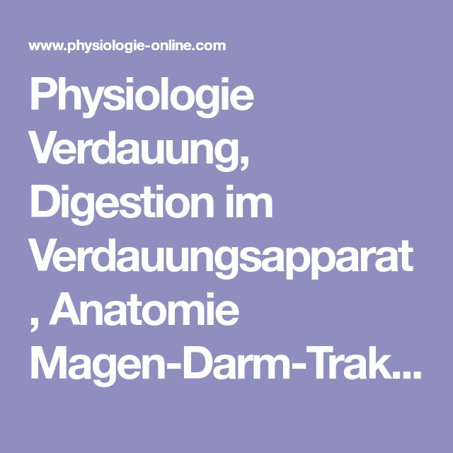 Physiologie Verdauung, Digestion im Verdauungsapparat, Anatomie ...