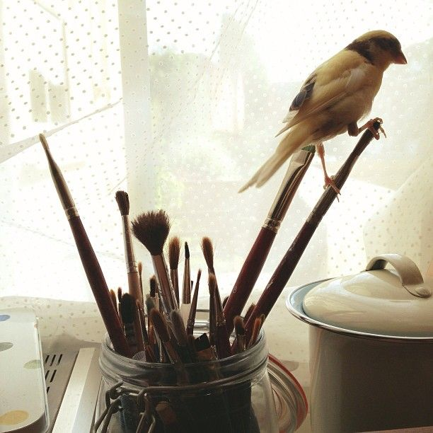 margueritemoulin: pollyfern: Ellis likes sitting on my paintbrushes! I need a birdie to keep me company while I paint!