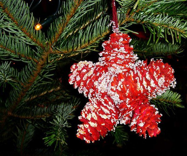 Oh so cute red snowy pine cone Christmas ornament. Kid craft. Paint first. Then shape n glue. Letter?