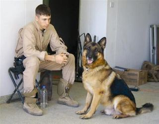 Lex Retired Mwd Dies Famous Dogs War Dogs Military Dogs