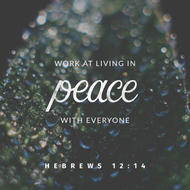 """How do I Achieve Peace AND Be Holy?    3/03/2017   Written by Elihu Anderson  for """"elihu's corner"""""""