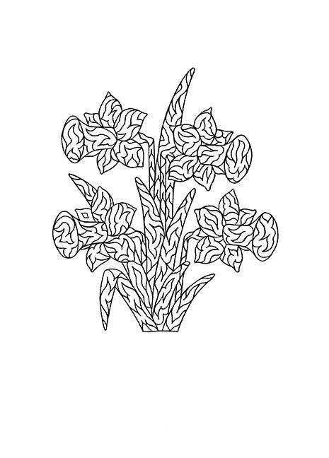 1126430931_779665.jpg (465×648) | flower coloring | Pinterest ...