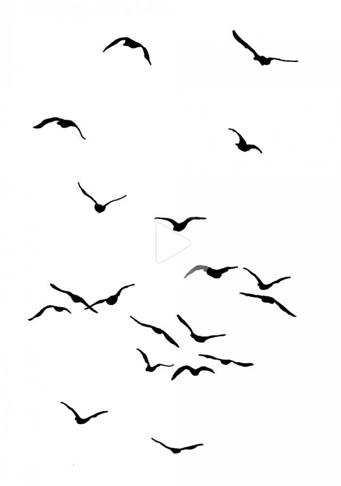 Birds 2 Flying Bird Silhouette Birds Painting Birds Flying