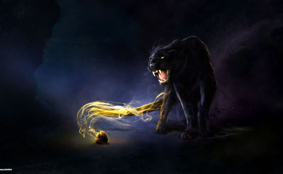 Fantasy Black Panther Jaguar Animal Animal Wallpaper Black Jaguar Animal