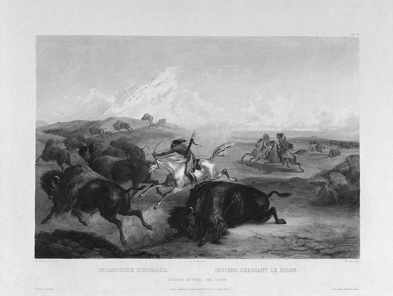 Abbildung aus dem Taschenbuch Weisheiten der Indianer von Ernst Probst - Gemälde von Karl Bodmer