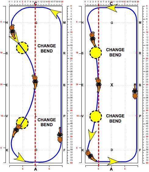 The shallow loop TheDigitalHorse - Dressage Tests Online