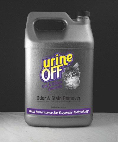 Les 25 meilleures id es de la cat gorie nettoyage d 39 urine de chat sur pinterest urine de chat - Enlever odeur urine chien ...