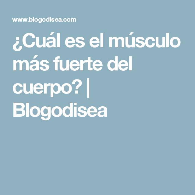 ¿Cuál es el músculo más fuerte del cuerpo?   Blogodisea