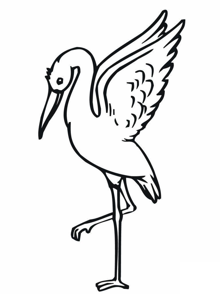 Kolorowanka Bocian Pokoloruj Obrazek Do Wydruku Animal Coloring Pages Coloring Pages Free Printable Coloring Pages