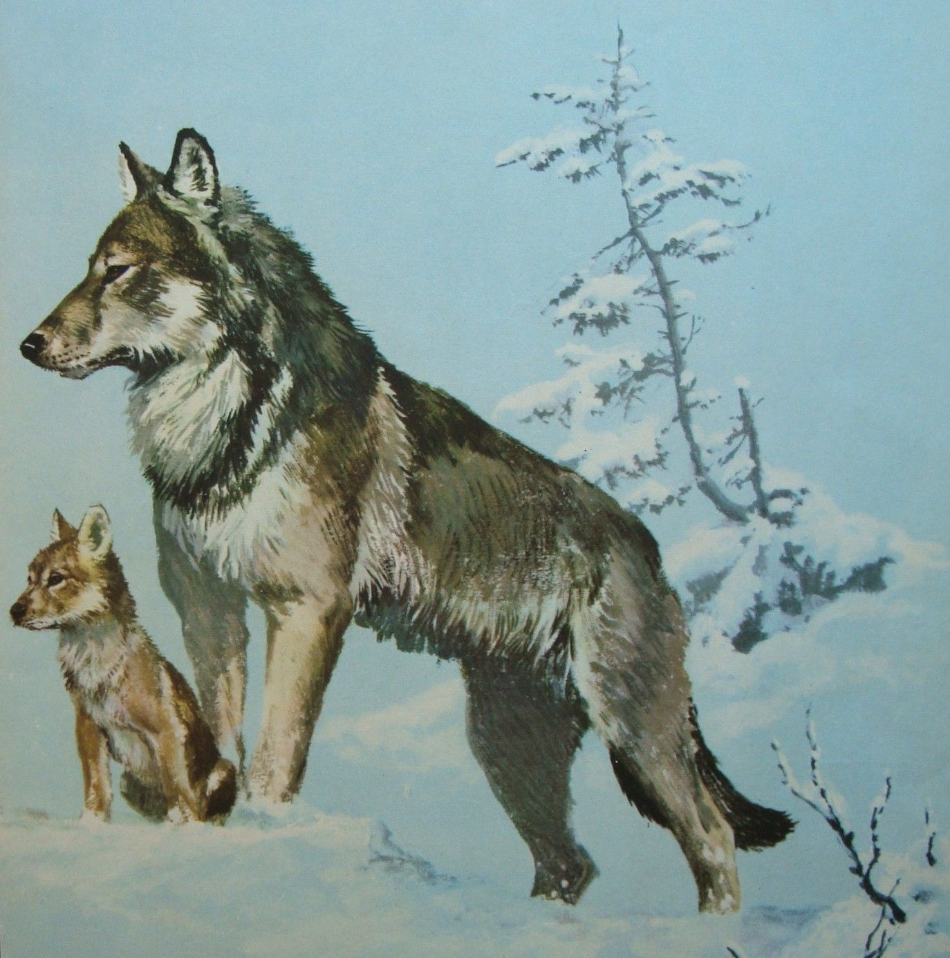 Unavailable Listing On Etsy Wolf Tattoos Wolf Painting Cubs Art