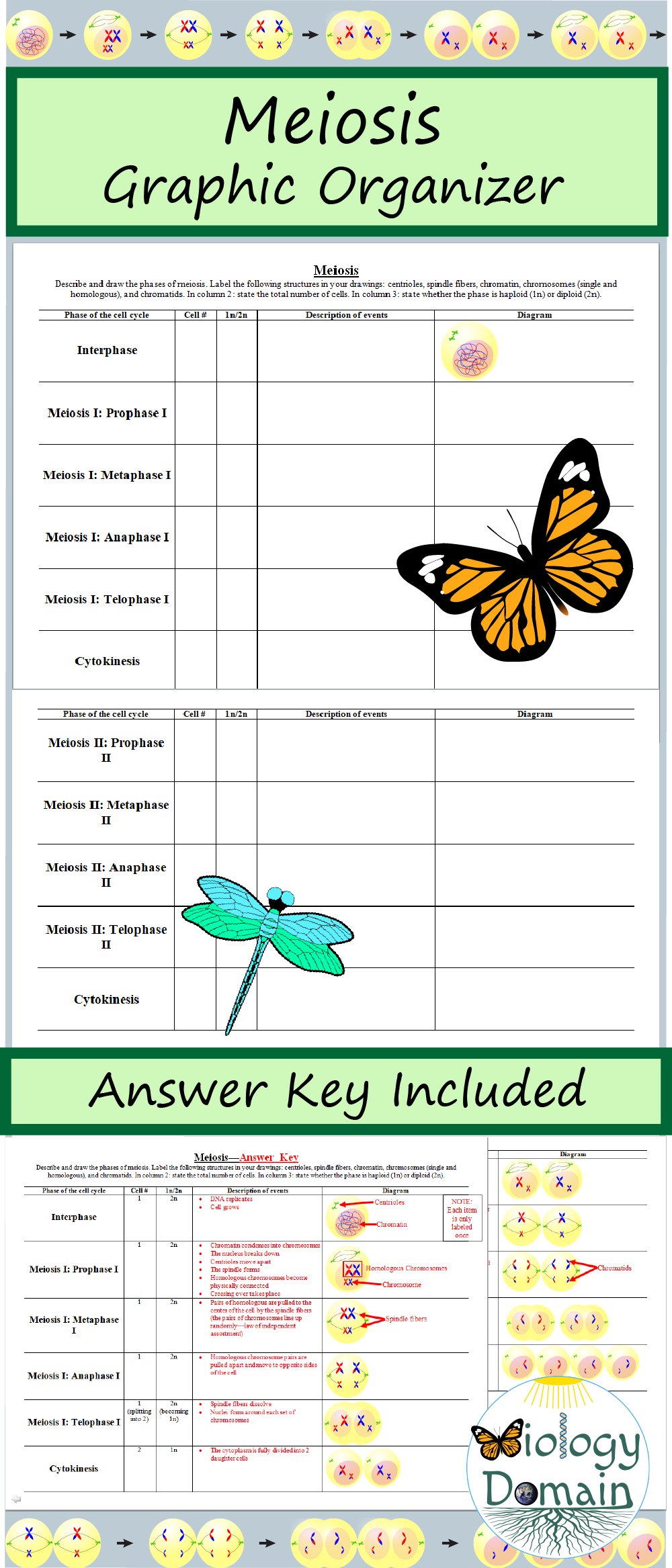 Pin By Melissa Wright On Teach Something Biology Lesson Plans Teaching Biology Biology Classroom
