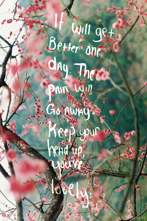 Cherry Blossom Quotes Tumblr