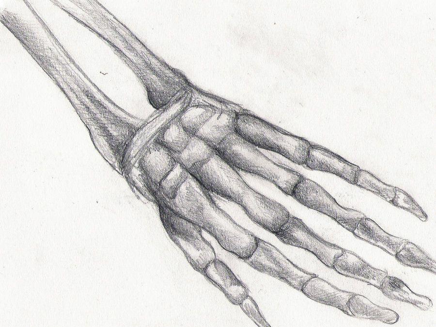 профессиональные смотреть картинки кисти рук стоит заметить, что