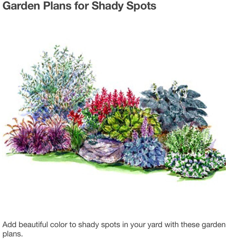 Ideas para manchas de plantas de sombra Home Landscape Ideas