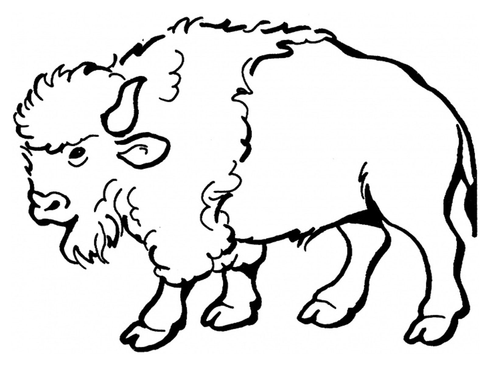 Free Printable Bison Coloring Pages For Kids Silhouettes Easy art