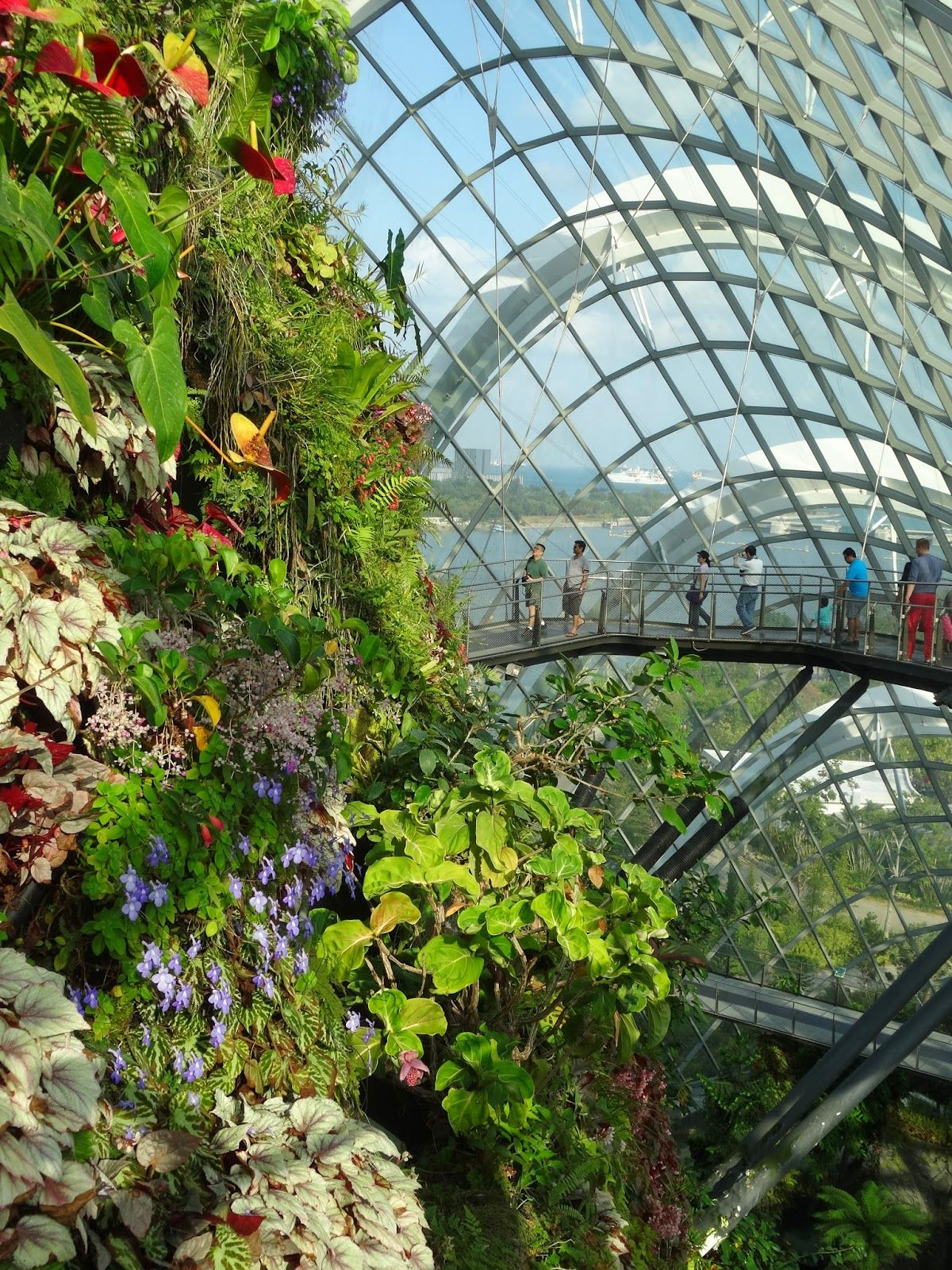 Singapore Flyer And Gardens By The Bay Double Domes Package