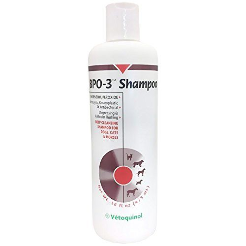 Vetoquinol BPO 3 Shampoo 3 Benzoyl Peroxide 16 oz >>> Find out more about the great product at the image link.