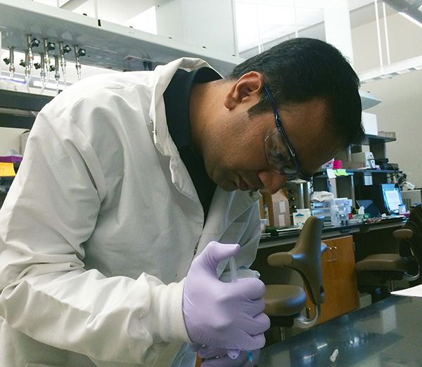 Texas A&M biomedical engineer developing material for healing broken bones