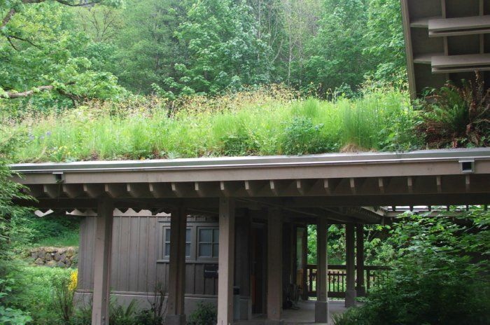 Plans, How Tos, And Some Of The Coolest Energy Saving Green Roofs Around.