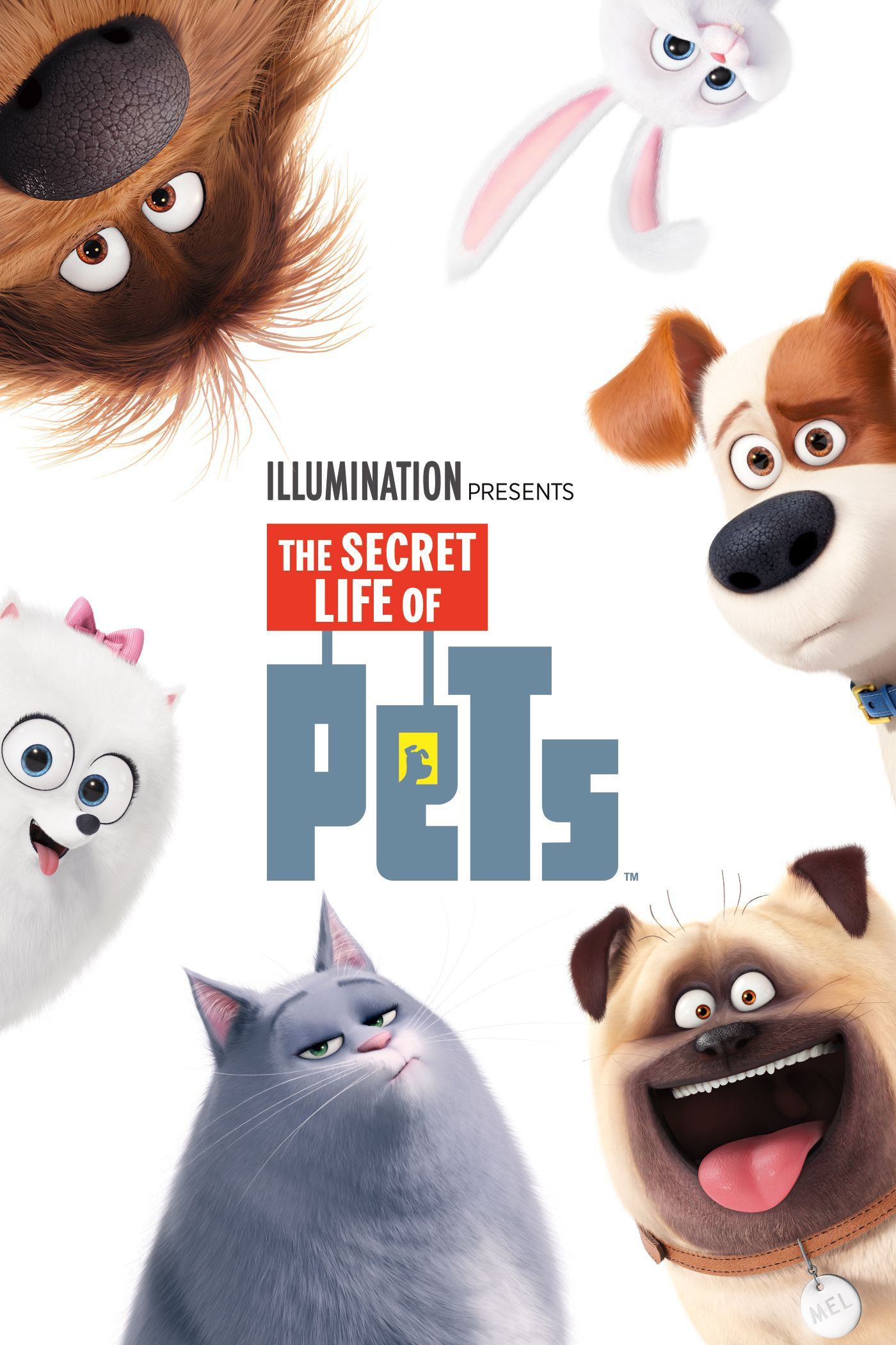Secret Life Of Pets The Hd Find Out What Your Pets Do When You Re Not At Home In This Animated Comedy Featuring Pets Movie Secret Life Of Pets Secret Life