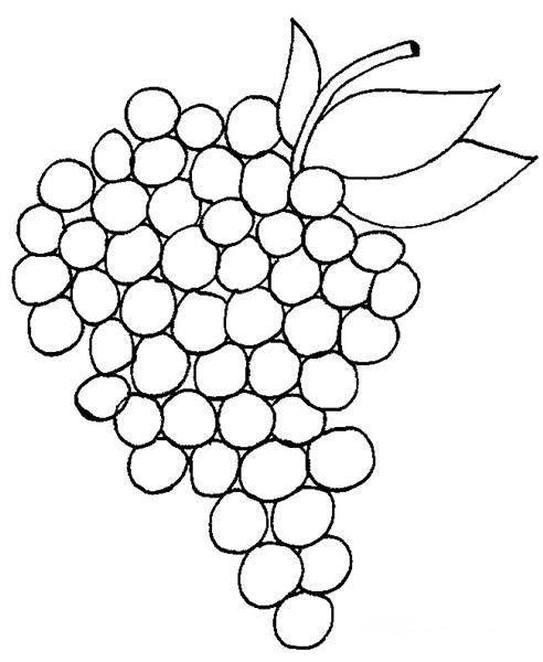 Okul öncesi üzüm Boyama Sayfaları üzüm