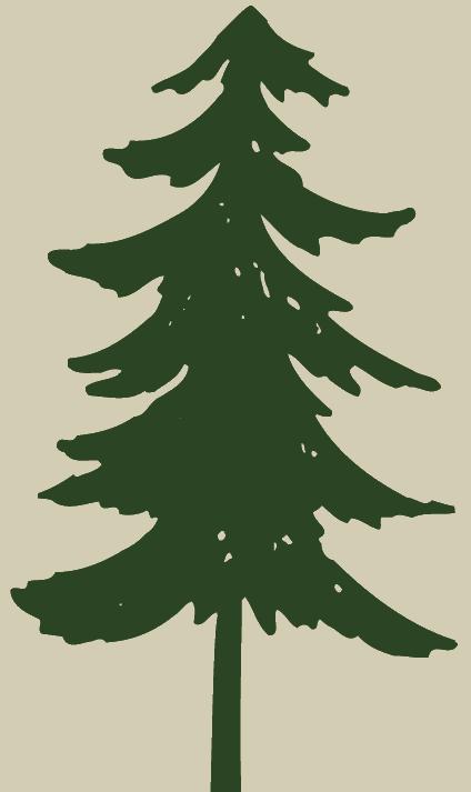 Clip Art Pine Trees Black And White Free Clipart Image Pine Tree Art Pine Tree Silhouette Silhouette Clip Art