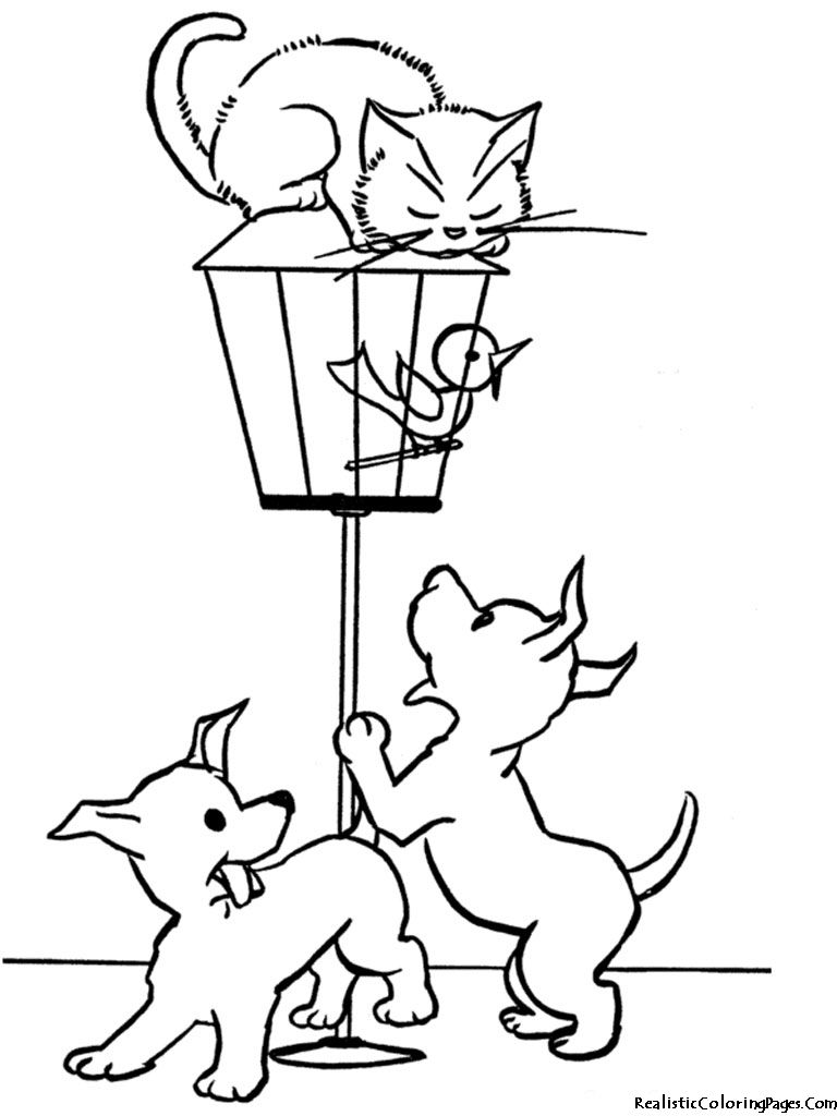 Cat And Dog Realistic Coloring Pages | Coloring Pages | Pinterest ...