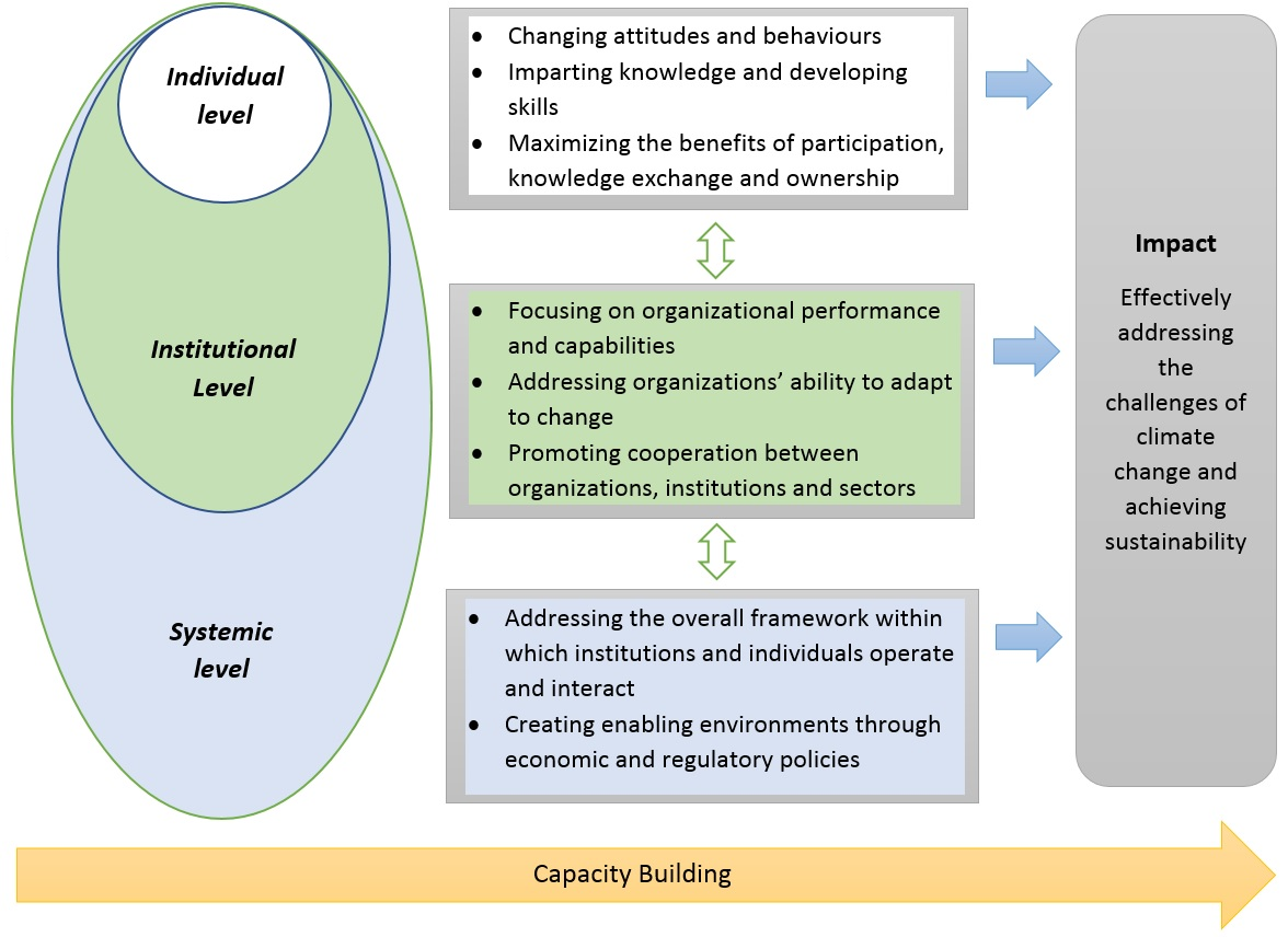 Building Capacity In The Unfccc Process