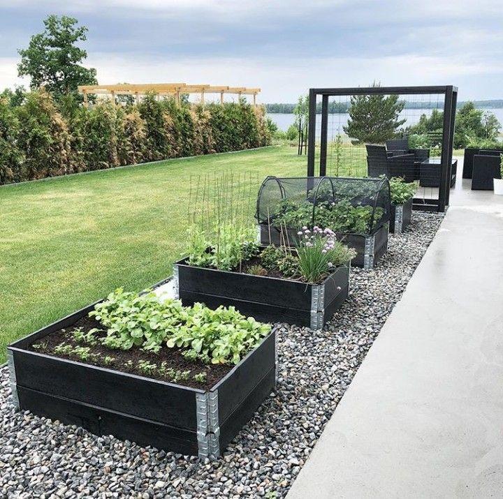 Pin By Geri On Landshaftnyj Dizajn Idei Backyard Vegetable Gardens Vegetable Garden Design Raised Garden