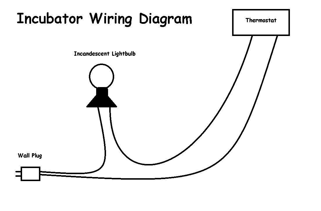 little giant incubator wiring diagram