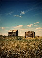 house and hay