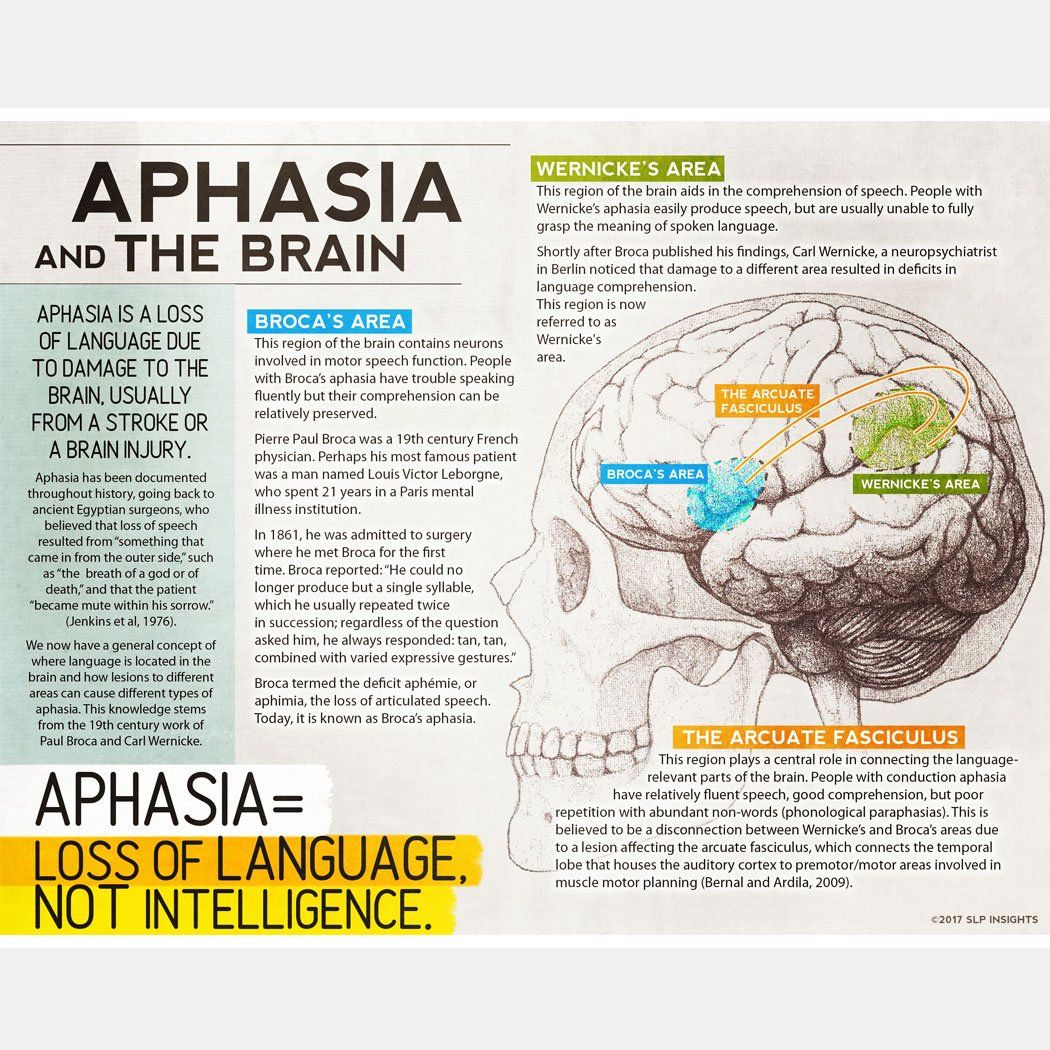Handout Aphasia And The Brain