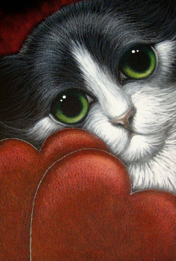 """""""Tuxedo Maine Coon Cat with Red Heart"""" par Cyra R. Cancel"""