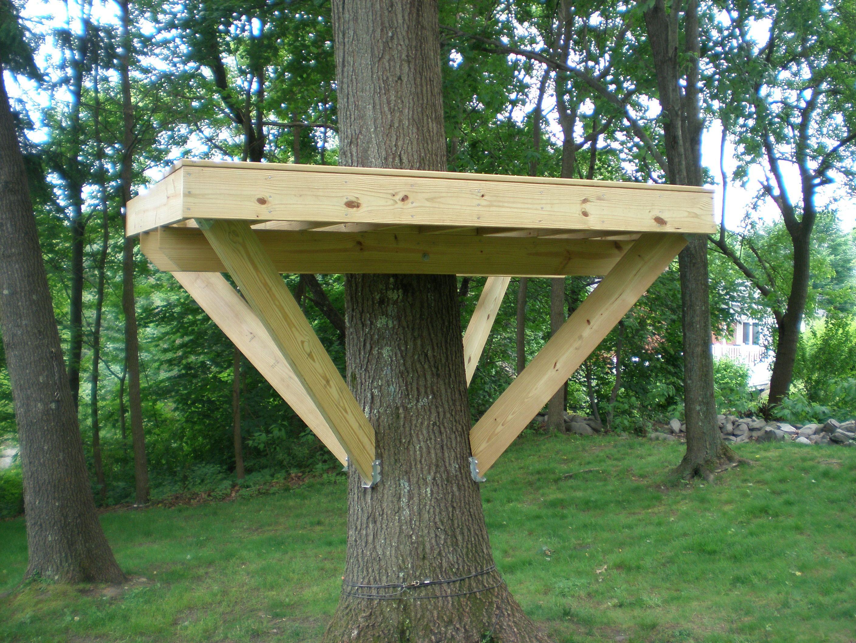 Tree Fort Platform Simple Tree House Tree House Diy Garden