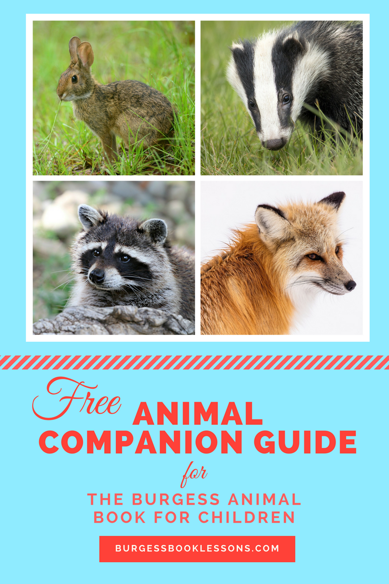 A Comprehensive Animal Guide For Teaching The Burgess Book Children Written By Thornton W