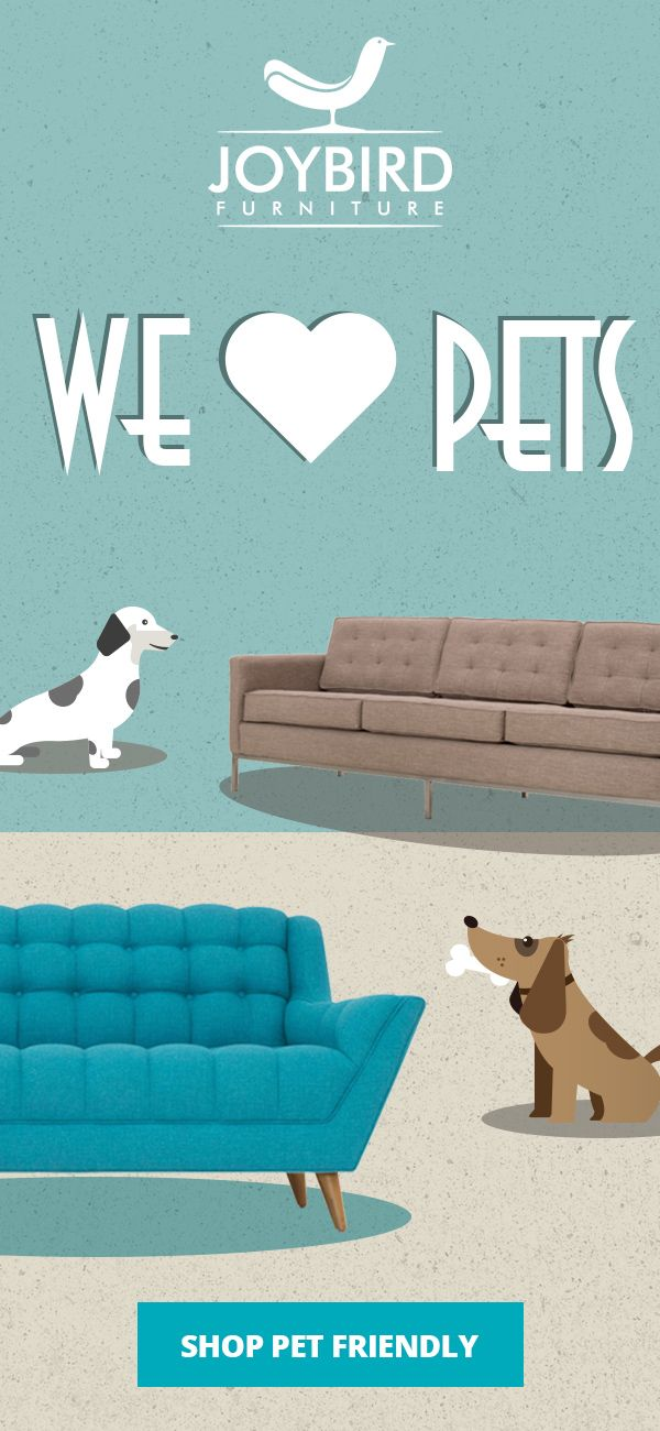Our Pet Friendly Fabrics Will Make, Pet Friendly Furniture