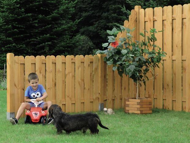 sichtschutz halbelement starnberg garten pflanzen pinterest sichtschutz z une und zaun. Black Bedroom Furniture Sets. Home Design Ideas
