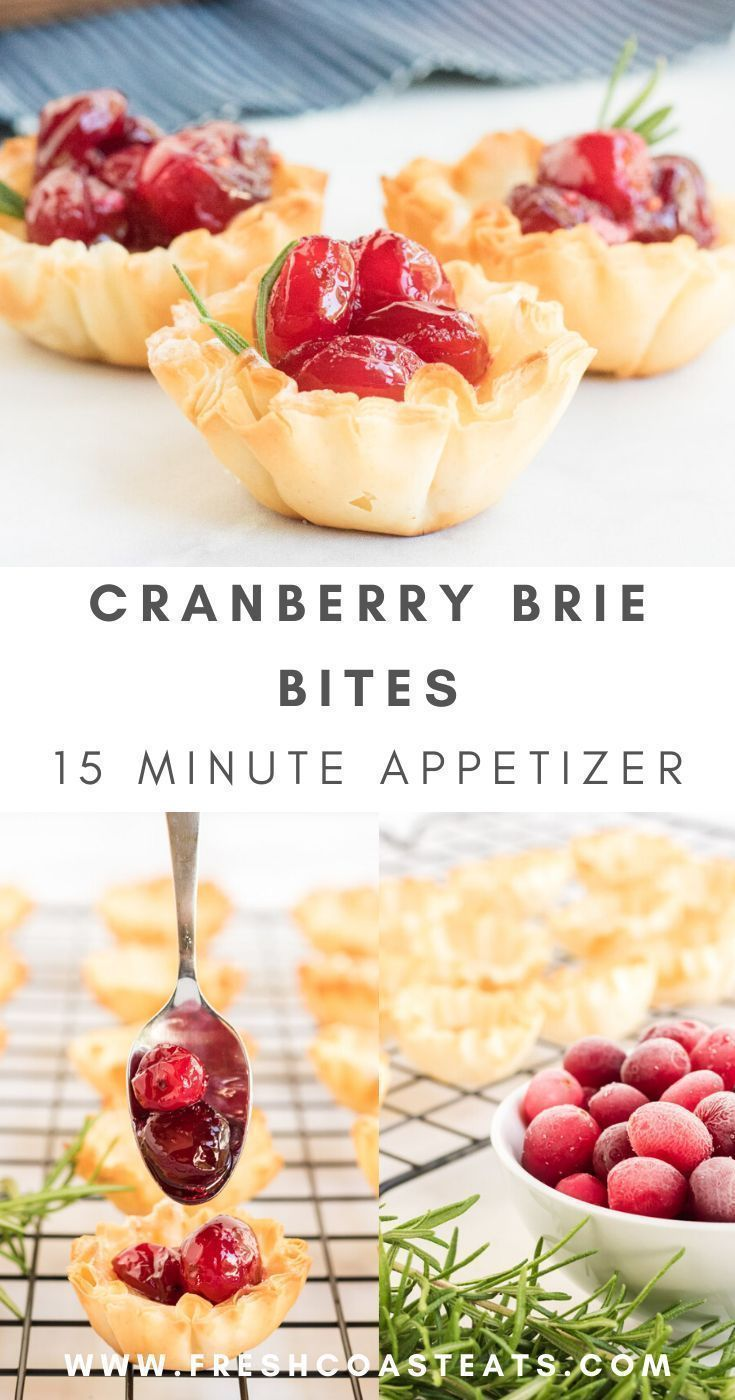 Cranberry Brie Bites Appetizer #cranberrybriebites Yum! These cranberry brie bites are so tasty and easy! The pre-made phyllo shells make it one of the quickest and easiest party appetizers you can bring and they look so impressive! This cranberry Brie Bites Recipe is simple the BEST! #cranberrybriebites #cranberrybriebitesrecipe #phyllo #tasty #easy #partyappetizers #cranberrybriebites Cranberry Brie Bites Appetizer #cranberrybriebites Yum! These cranberry brie bites are so tasty and easy! The