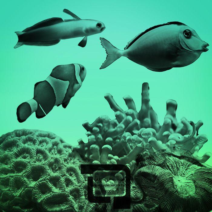 35 Flashing Photoshop Fish Brushes - Creative CanCreative Can