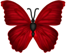 olinka.lilinka — «SC_LHE_Butterf…» на Яндекс.Фотках
