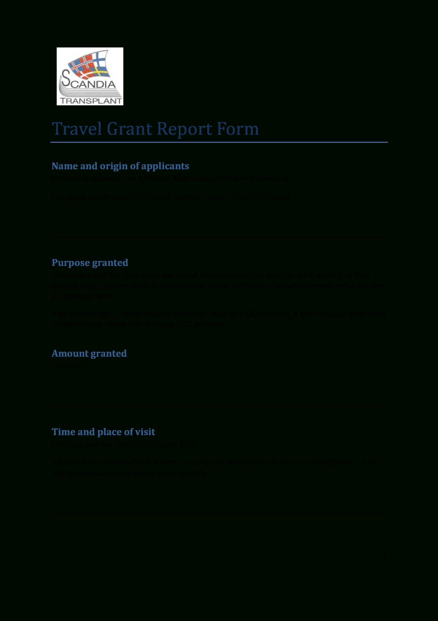 Travel Grant Templates At Allbusinesstemplates Throughout Donation Report Template Book Report Templates Business Template Professional Templates