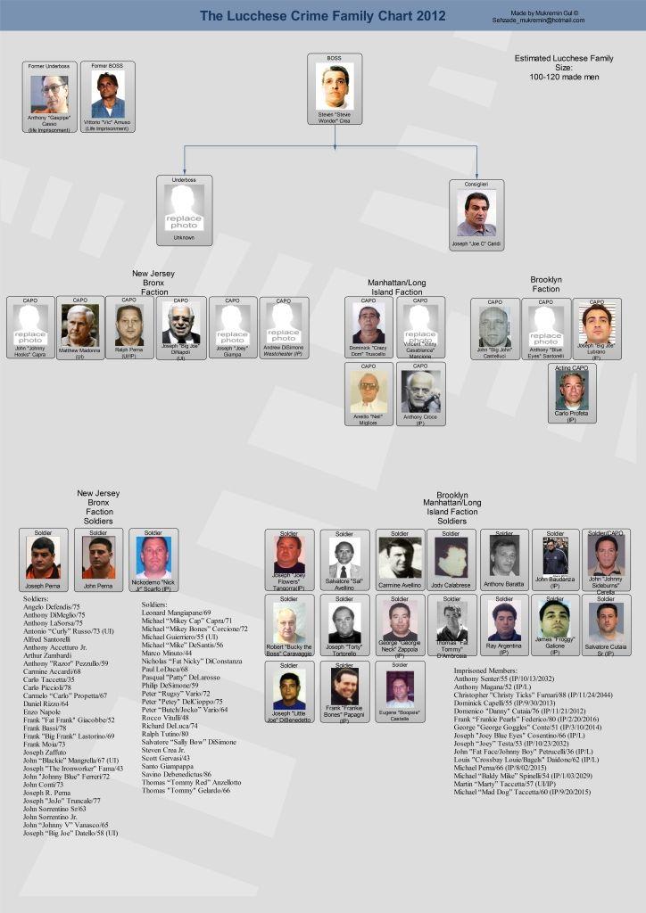 lucchese crime family leadership chart new york mafia