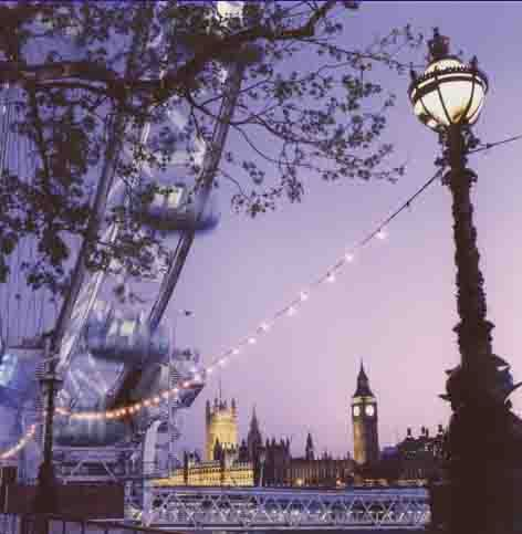 Lavender London