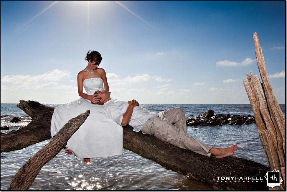 Driftwood Beach Post Wedding Shoot On Jekyll Island By Tony Harrell