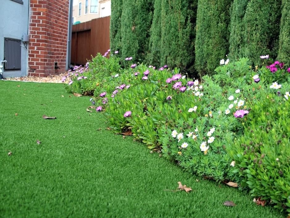 texas landscaping ideas for front yard best artificial ...